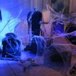 אירוע קונספט - חדר מכוסה בכורי עכביש