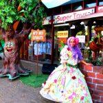 אירוע קונספט - דמויות היער הקסום