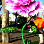 אירוע קונספט - פרח ענק