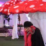 אירוע קונספט - דמות מכשפה מתחת לפטריית ענק
