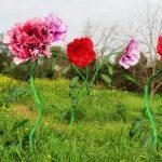 אירוע קונספט - פרחים ענקיים